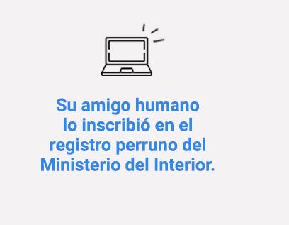 Su amigo humano lo inscribió en el registro perruno del Ministerio del Interior.