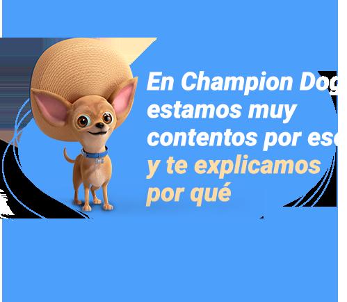 En Champion Dog estamos muy contentos por eso y te explicamos por qué