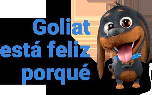 Goliat está feliz porqué