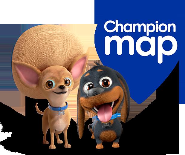 Champion map
