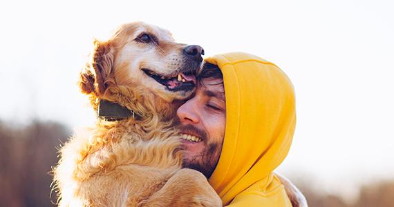Vacaciones: con perro o sin perro. Pros y contras